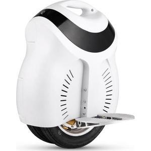 Моноколесо Rover Wind-2 White (Wind-2 White)
